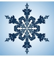 Beautiful blue snowflake vector