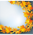 Abstract nature background autumn leaf fall vector
