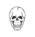 Skull design template vector
