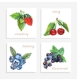 Berry paper cards vector