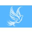 Dove on blue vector