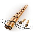 Ethnic bamboo flute vector