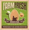 Farm fresh chicken eggs vector