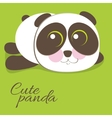 Cute young baby panda bear vector