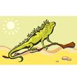 Lizard iguana in the desert vector