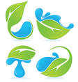 Leaves and drops vector