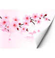 Spring background with a blossoming sakura branch vector