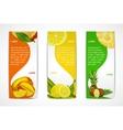 Tropical fruits vertical banner set vector