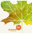 Simple autumn background vector