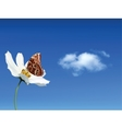 Butterfly on white flower against the sky vector