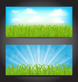 Set summer cards with grass natural backgrounds vector