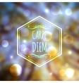Corporate website design carpe diem vector