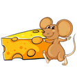 A brown mouse beside the big slice of cheese vector