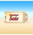 Summer sale tag vector
