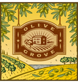 Retro olive grove vector