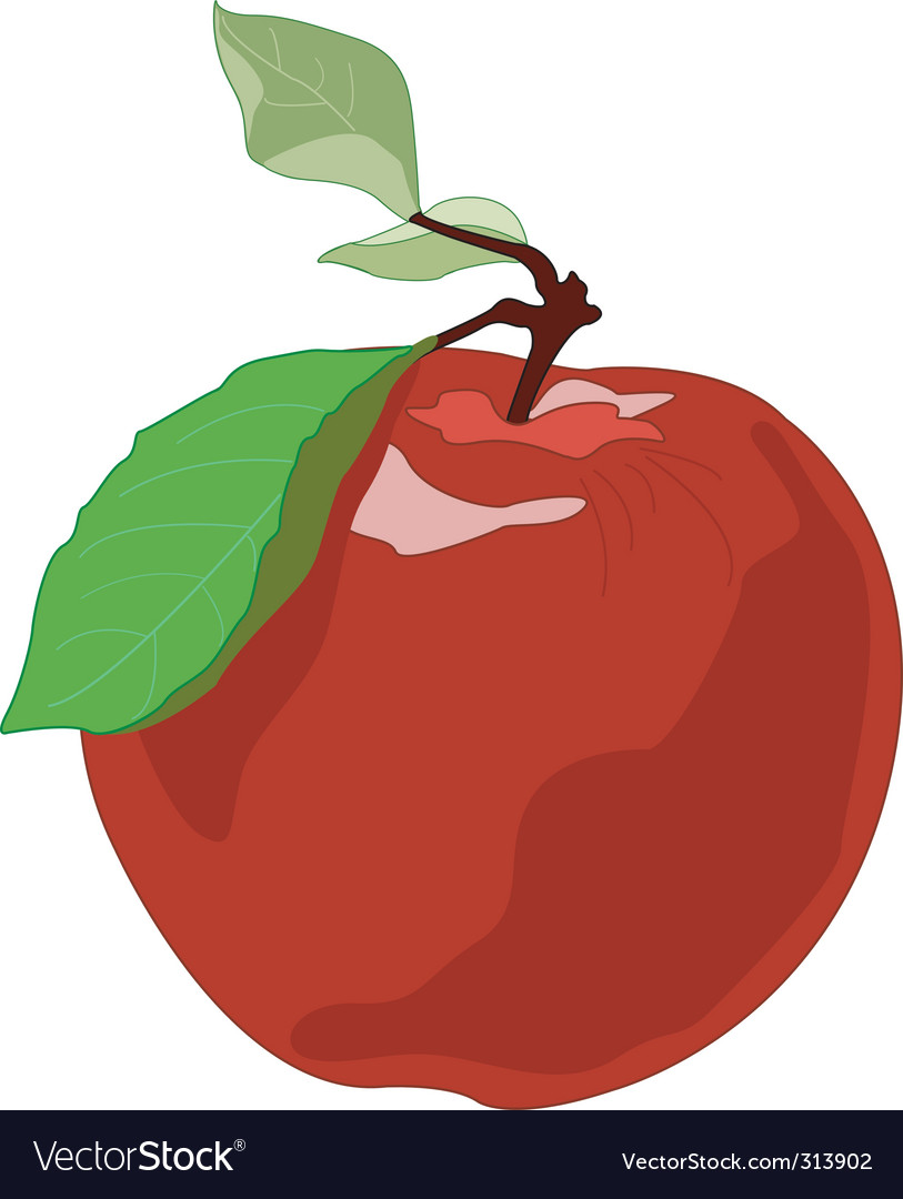 Apple drawing vector | Price: 1 Credit (USD $1)