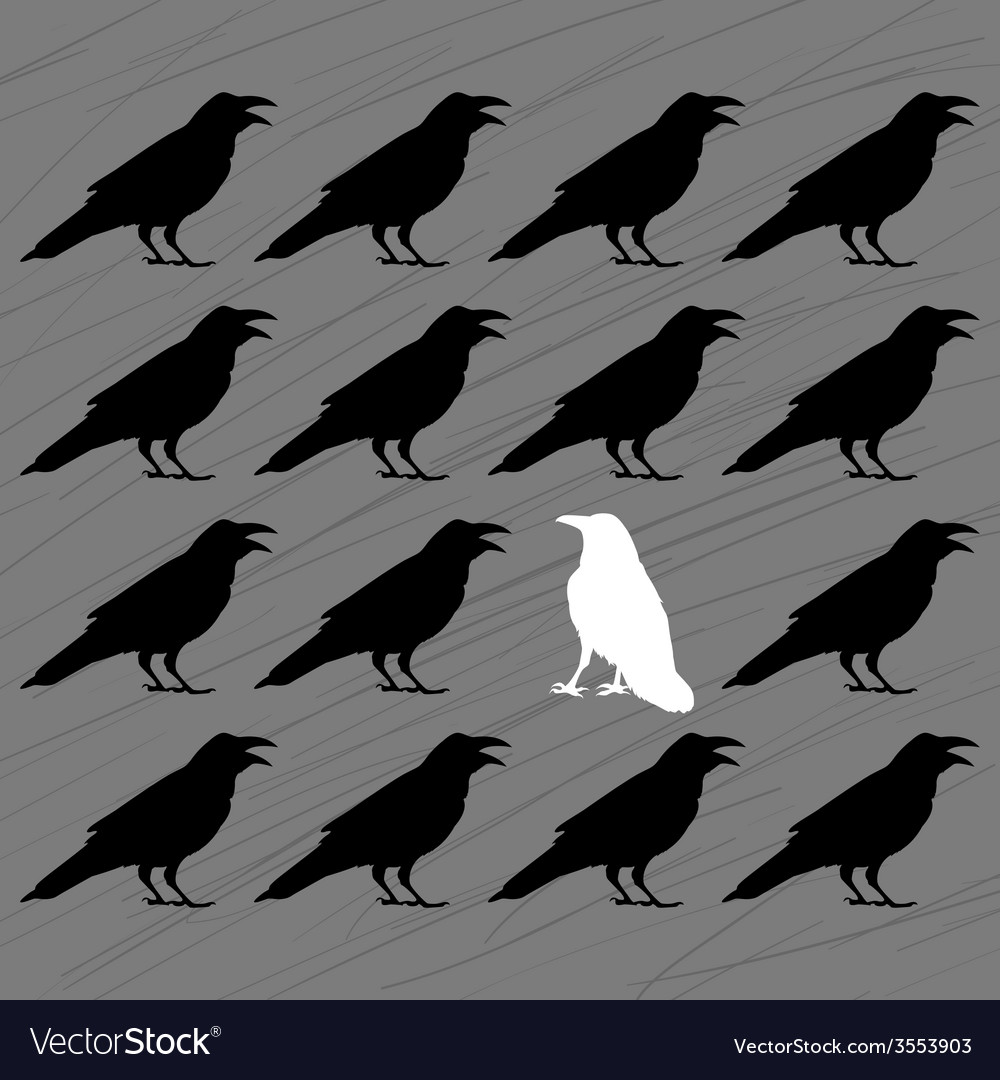 White crow among black crows vector   Price: 1 Credit (USD $1)