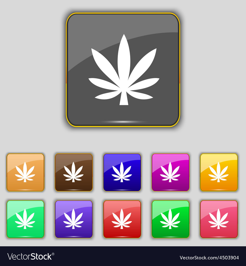 Cannabis leaf icon sign set with eleven colored vector | Price: 1 Credit (USD $1)