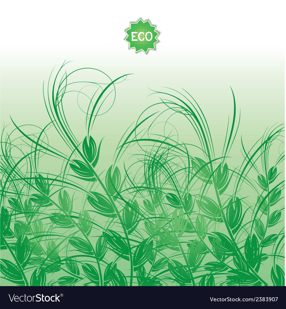 Background with green grass ears of corn vector | Price: 1 Credit (USD $1)