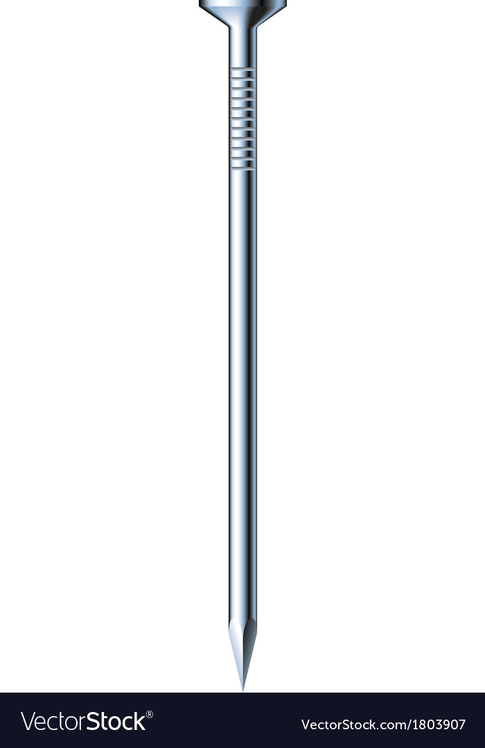 Metal nail vector | Price: 1 Credit (USD $1)