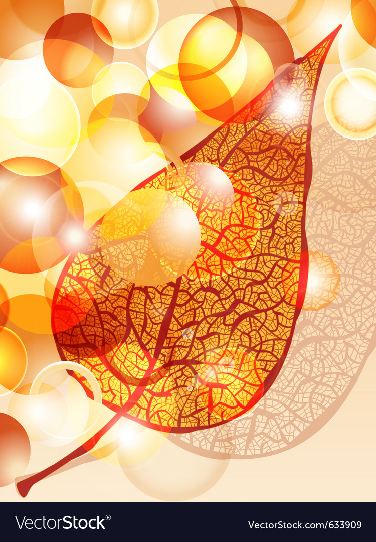 Eps 10 autumn leaf and bright balls vector | Price: 1 Credit (USD $1)