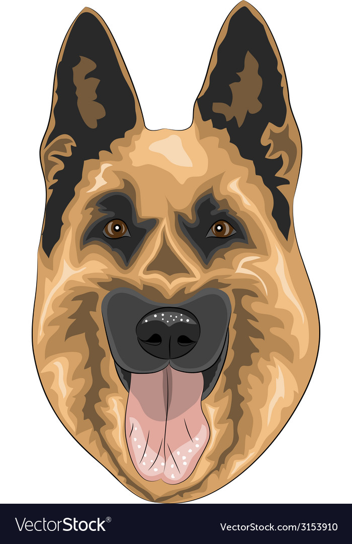 Shepherd a vector | Price: 1 Credit (USD $1)