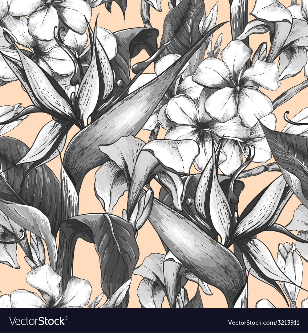 Monochrome seamless pattern with exotic flowers vector