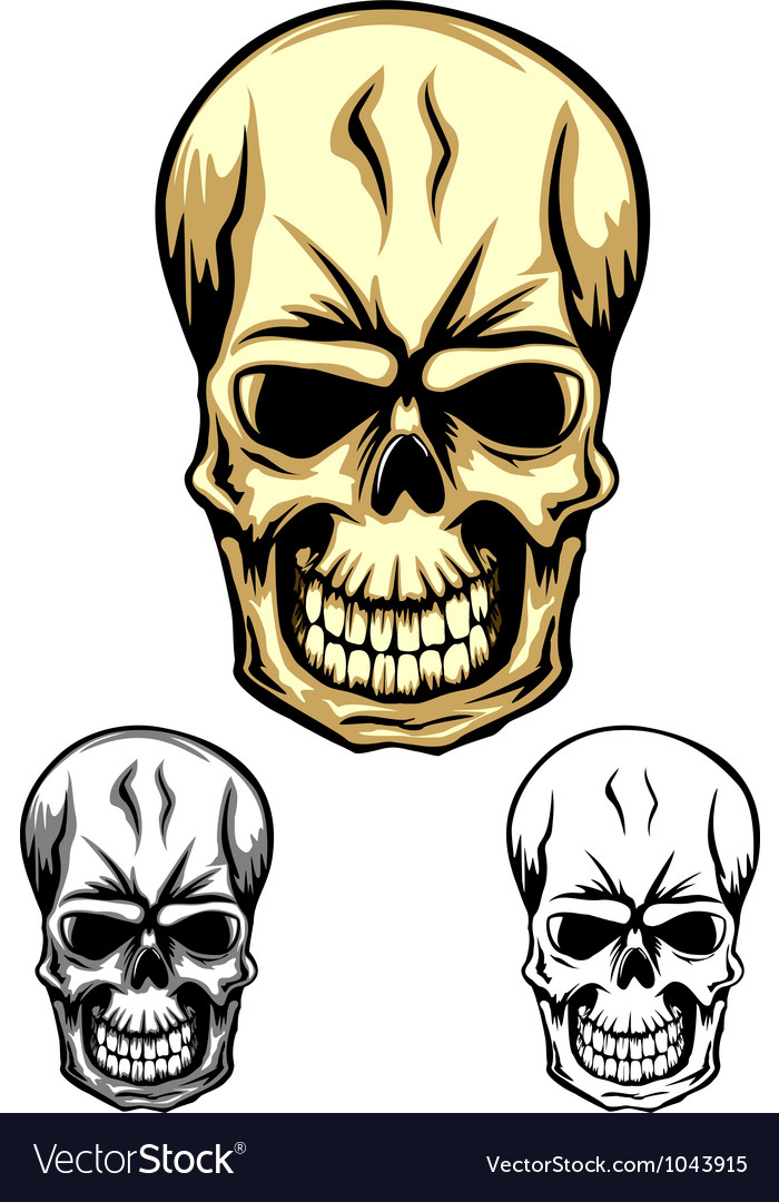 Skull color dwa vector | Price: 1 Credit (USD $1)