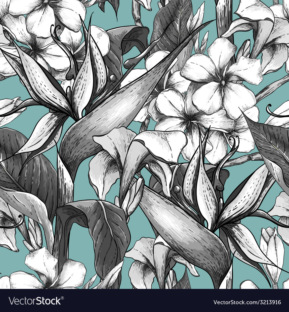 Monochrome seamless pattern with exotic flowers vector | Price: 1 Credit (USD $1)