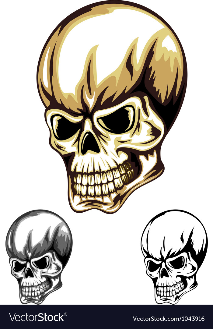 Skull color vector | Price: 1 Credit (USD $1)