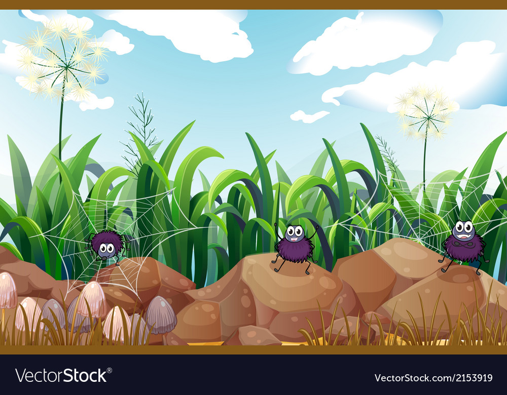 Spiders near the rocks vector | Price: 3 Credit (USD $3)