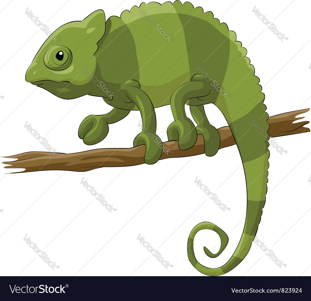 Chameleon vector | Price: 1 Credit (USD $1)