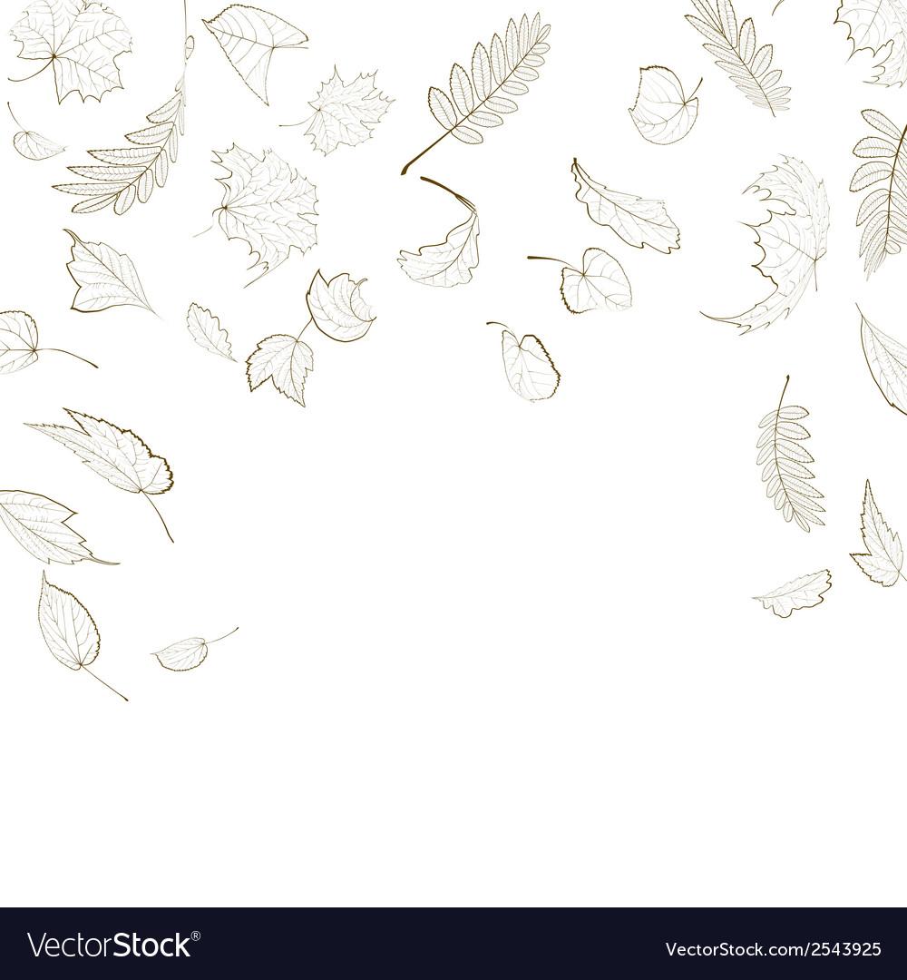 Fall leaf skeletons autumn design template vector | Price: 1 Credit (USD $1)