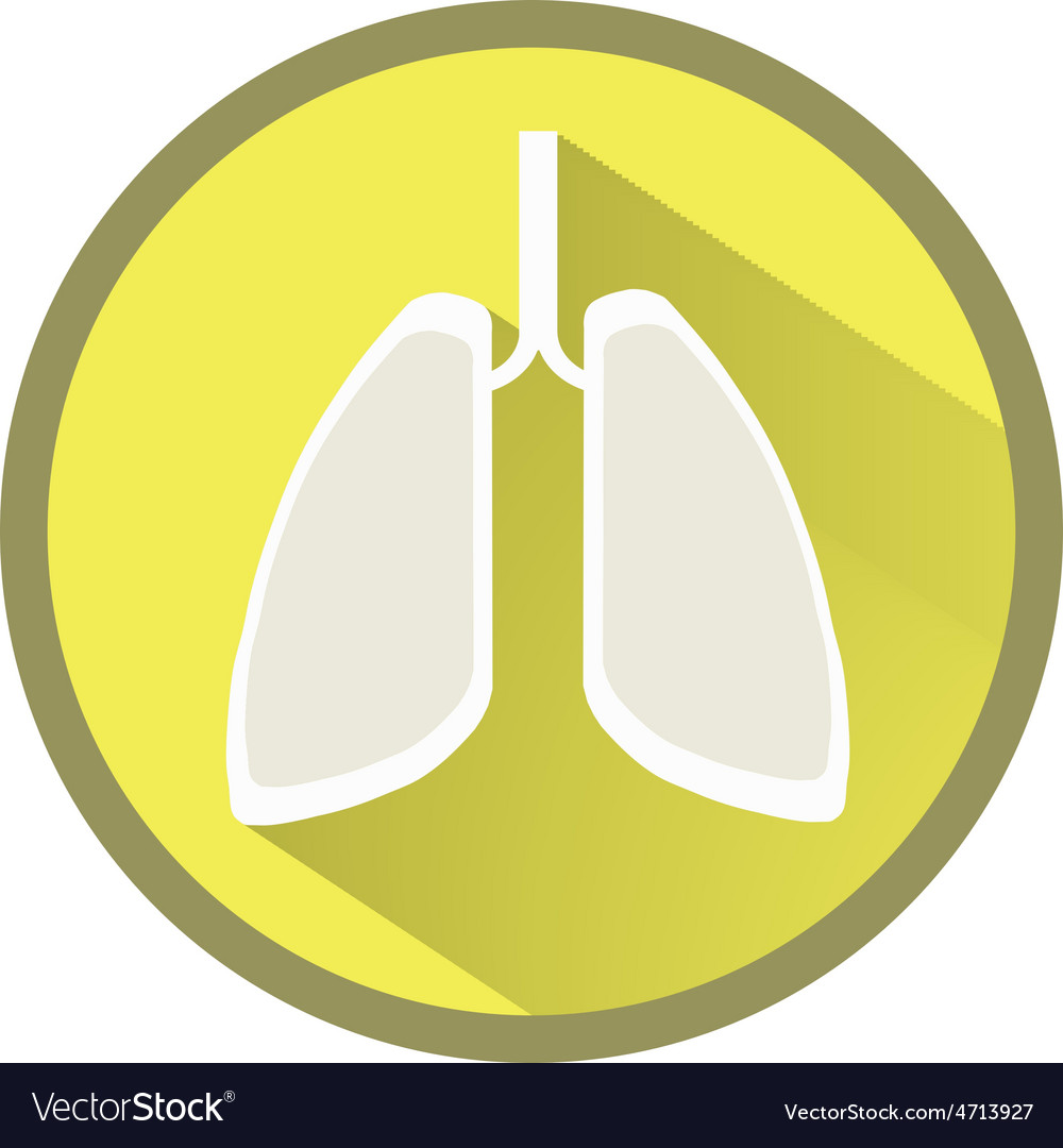 Lungs flat icon with long shadow vector | Price: 1 Credit (USD $1)
