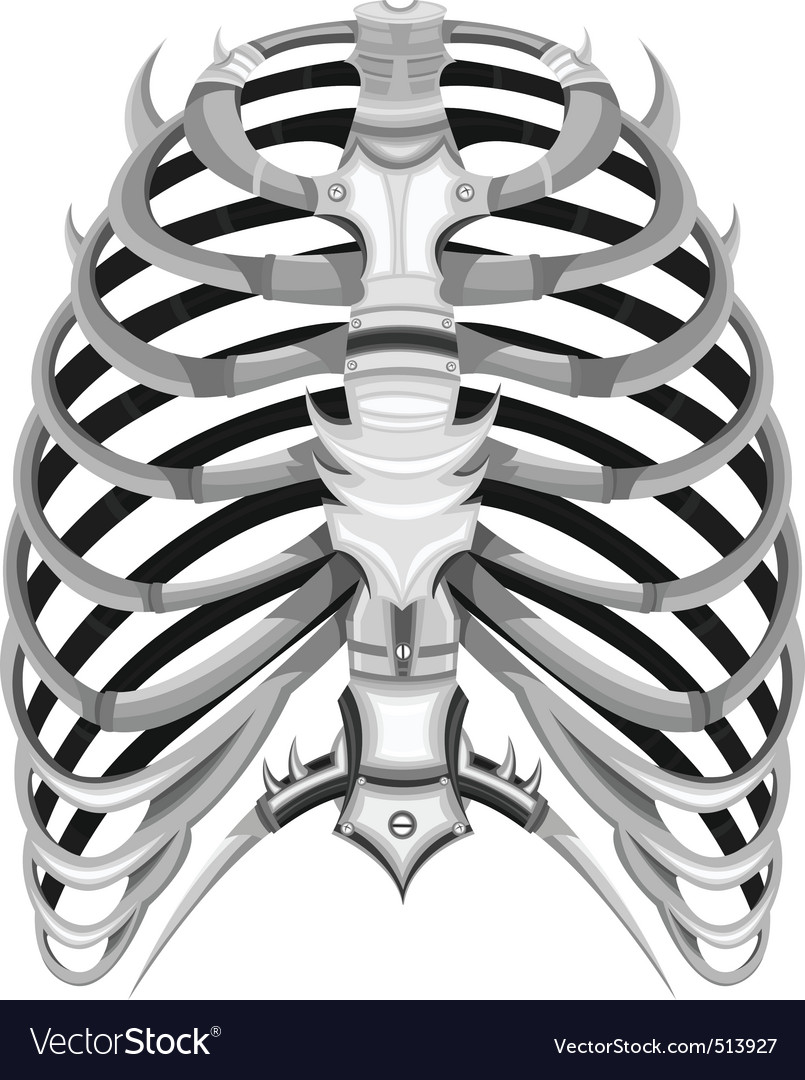 Ribs of steel vector | Price: 1 Credit (USD $1)