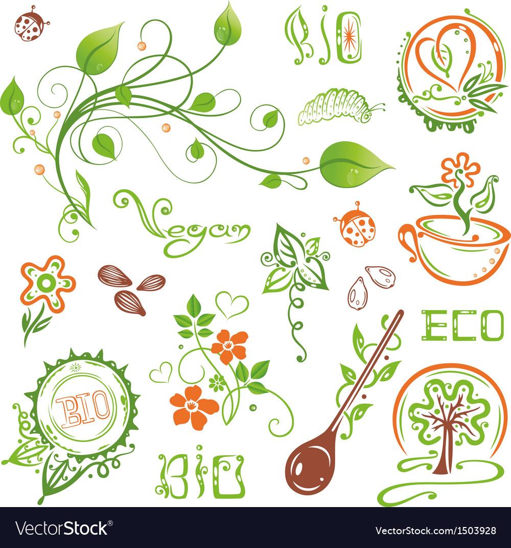 Bio eco vegan nature set vector | Price: 1 Credit (USD $1)