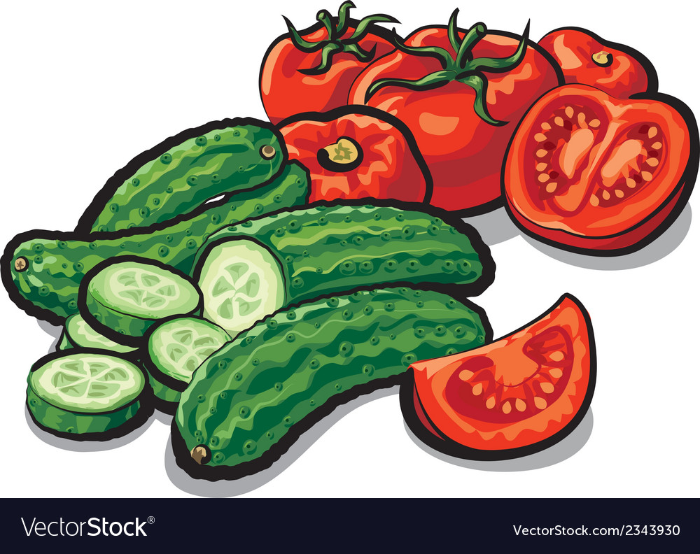 Cucumbers and tomatoes vector | Price: 1 Credit (USD $1)