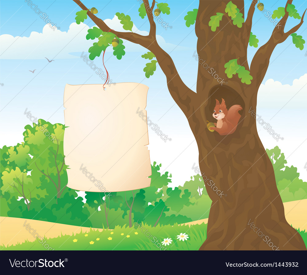 Forest placard and squirrel vector | Price: 1 Credit (USD $1)