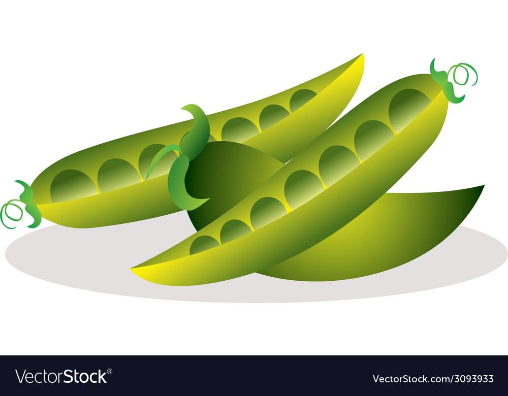Peas vector | Price: 1 Credit (USD $1)