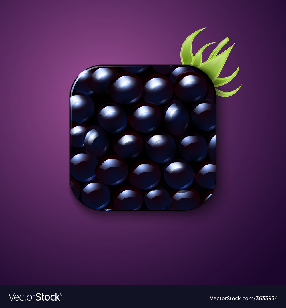 Blackberry texture icon stylized like mobile app vector | Price: 1 Credit (USD $1)