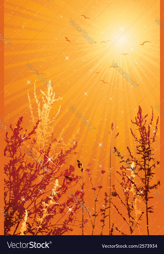 Summer landscape with many plants vector   Price: 1 Credit (USD $1)