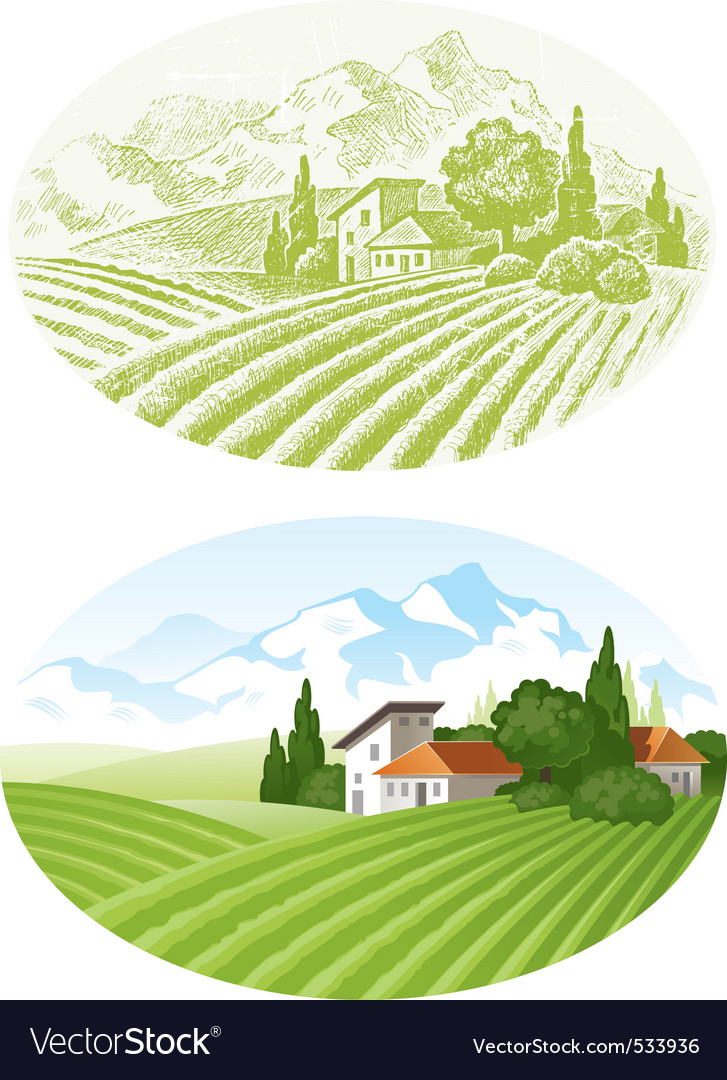 Country landscape vector | Price: 3 Credit (USD $3)