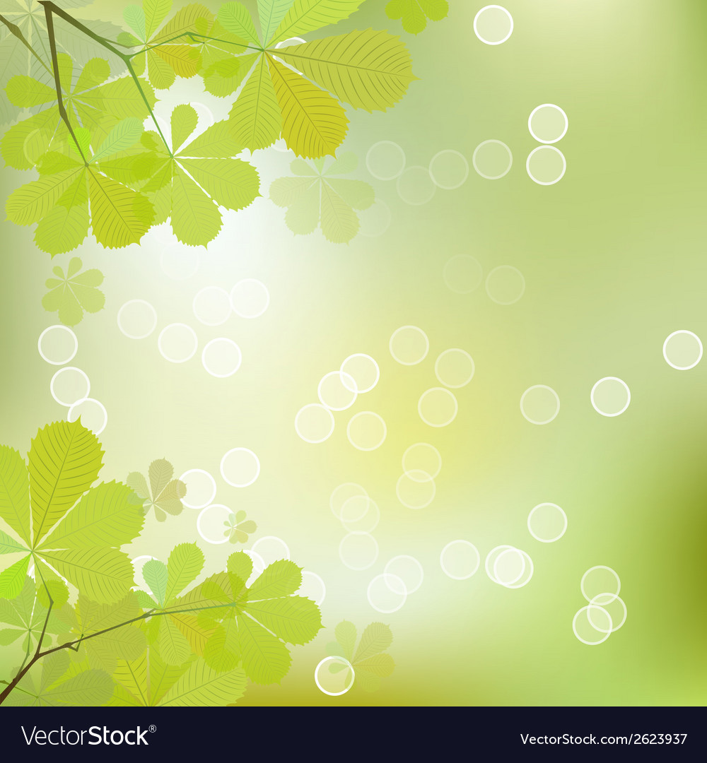 Chestnutleaves vector | Price: 1 Credit (USD $1)
