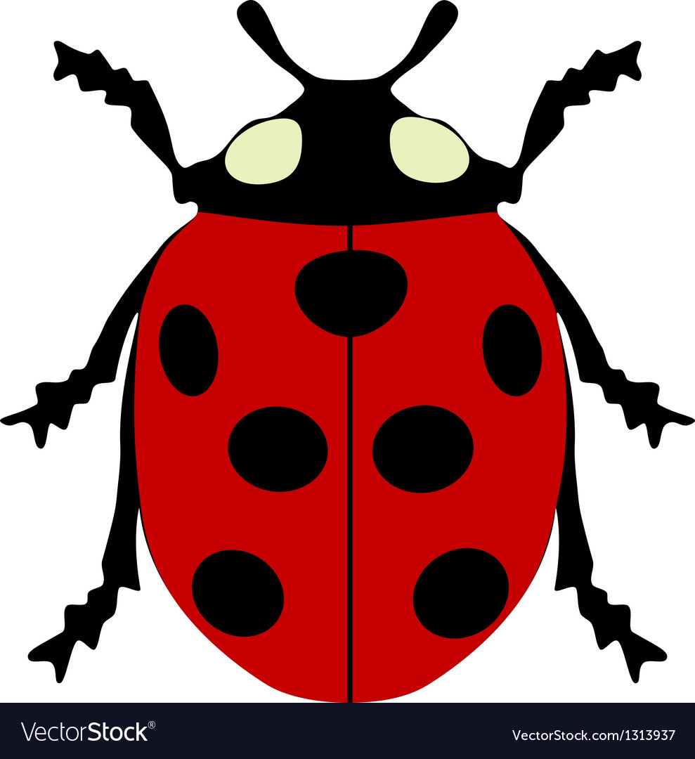 Ladybird isolated vector | Price: 1 Credit (USD $1)