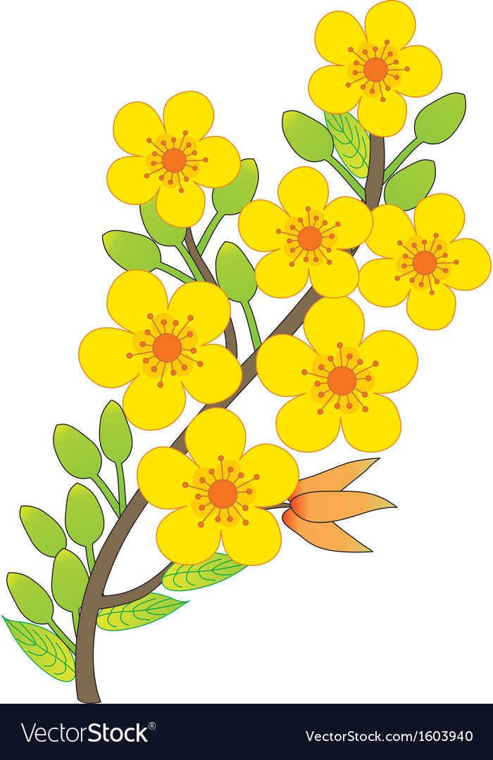 Apricot blossom vector | Price: 1 Credit (USD $1)