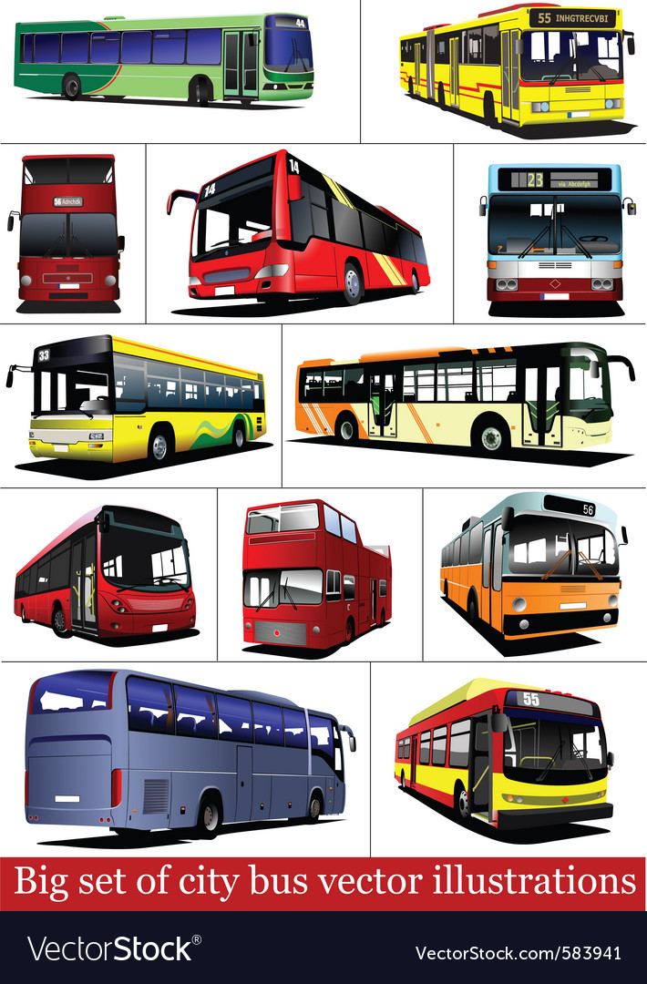 Bus collection vector | Price: 1 Credit (USD $1)