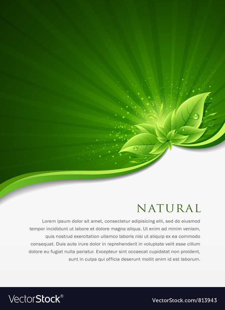 Green leaf ecology concepts vector | Price: 3 Credit (USD $3)
