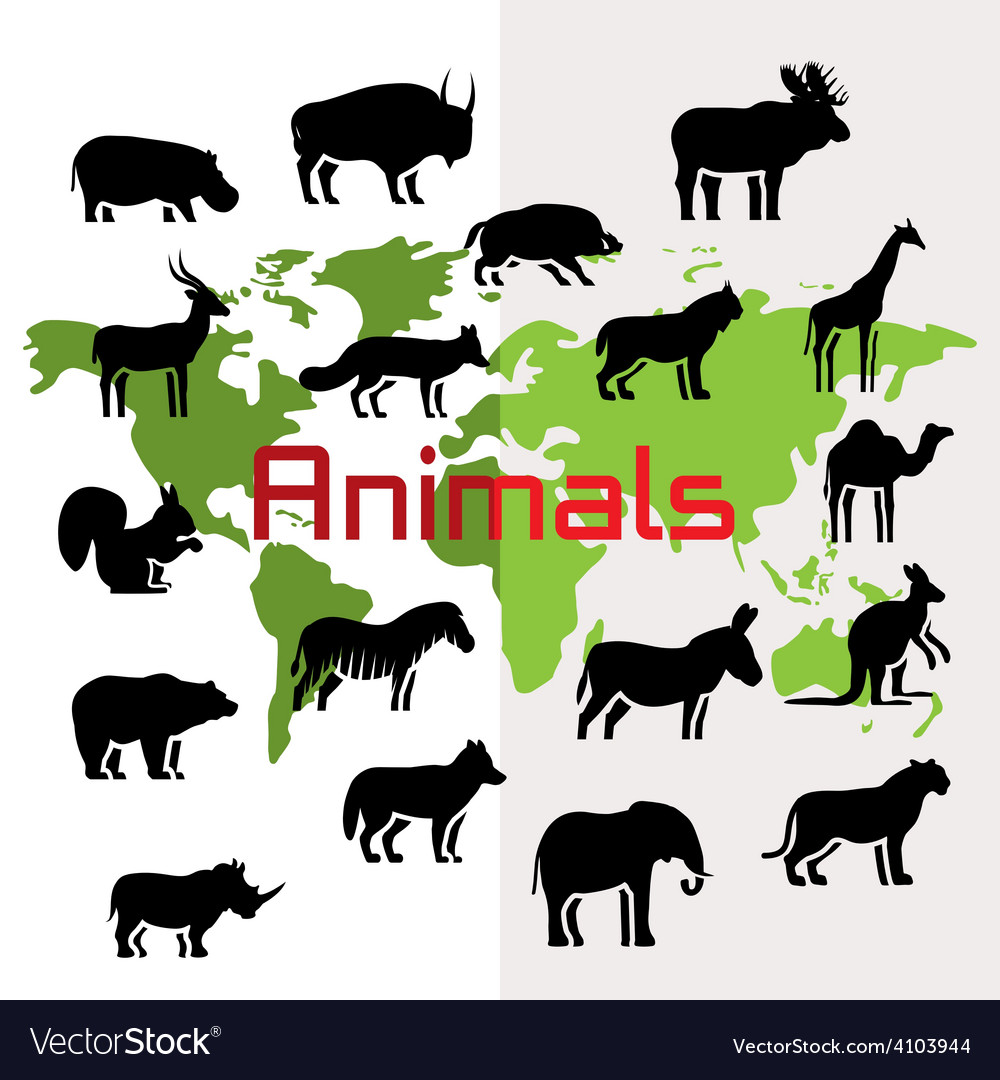 Animals and map vector | Price: 1 Credit (USD $1)