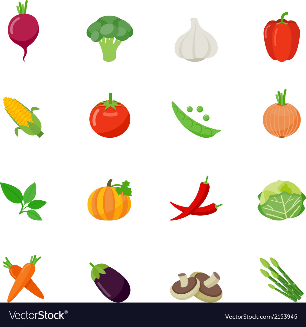 Food icon flat full color vector | Price: 1 Credit (USD $1)