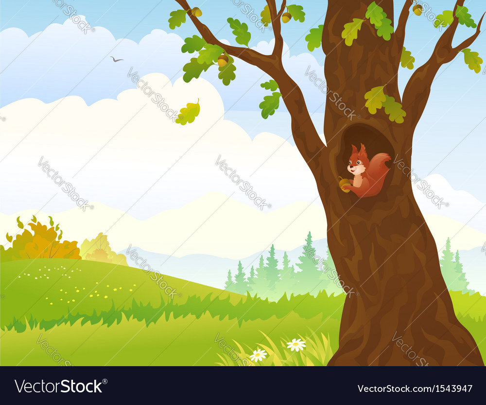 Autumn squirrel vector | Price: 1 Credit (USD $1)